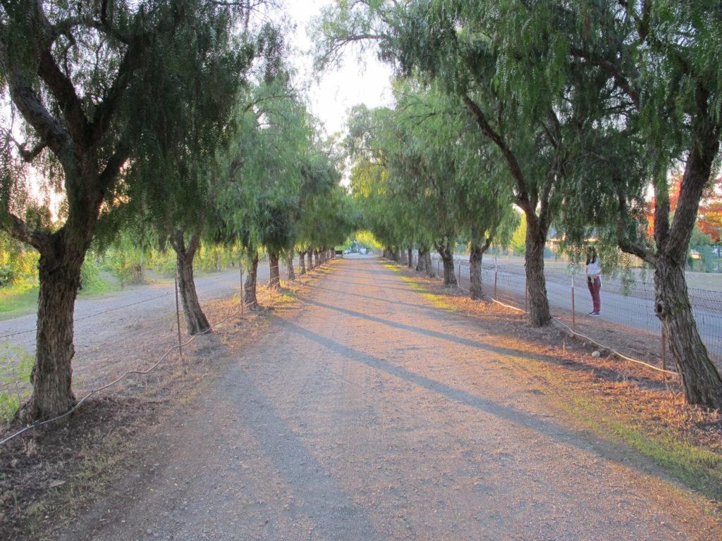OctNov2011 095